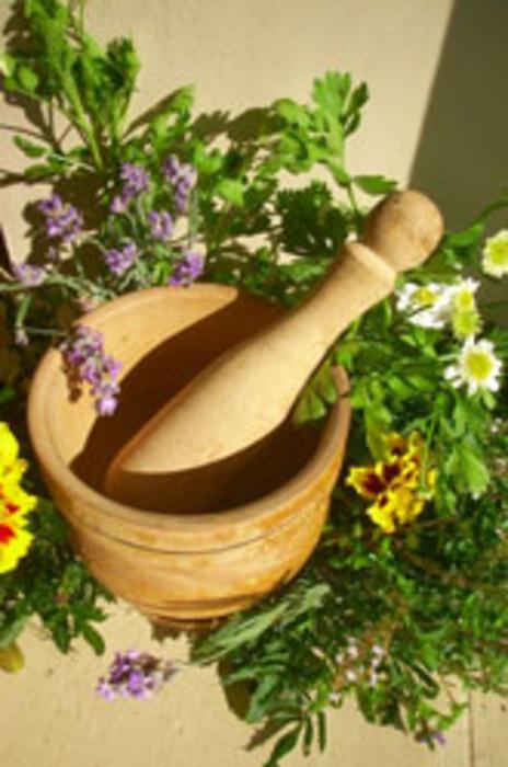apothecary_herb_garden_600x (464x700, 88Kb)