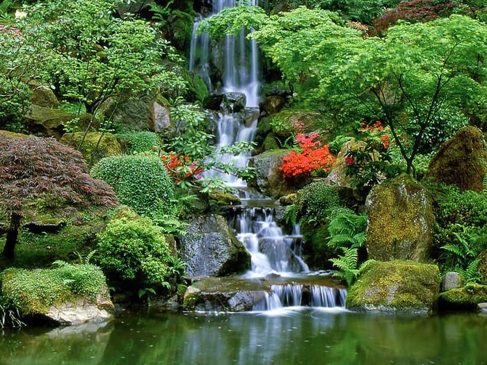 Скачать бесплатно водопад 5