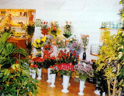 цветы (500x387, 44Kb)