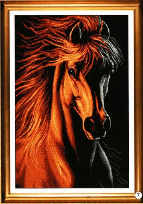 Конь в лучах заката.