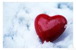 Превью Это любовь (76) (700x467, 164Kb)