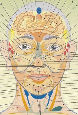 head (271x400, 72Kb)