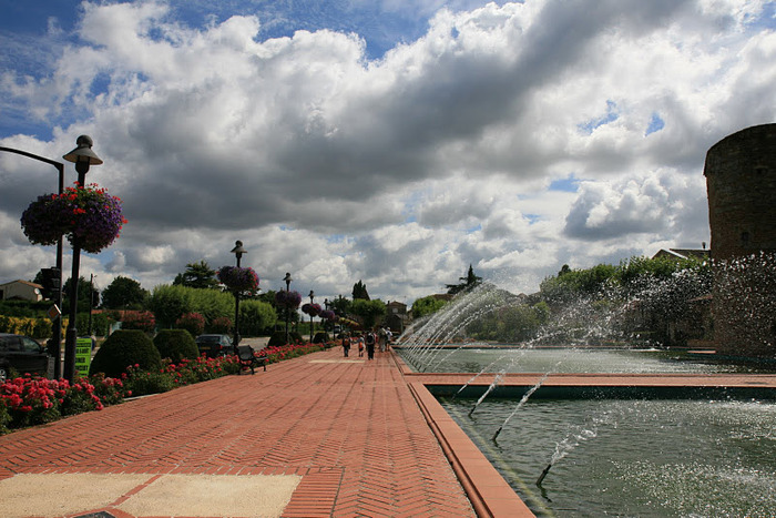 Есть в графском парке тихий пруд..... Там лилии цветут . .Ботанический сад Latour - Marliac. 67129
