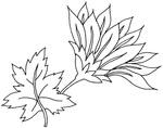 Превью 004 (640x505, 57Kb)