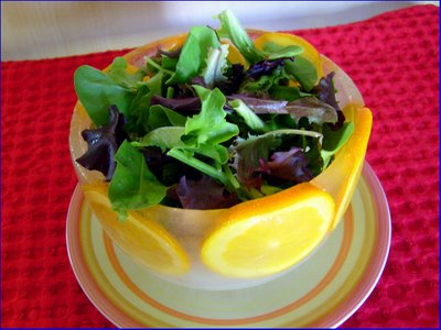 ice bowl salad 4 (400x300, 29Kb)