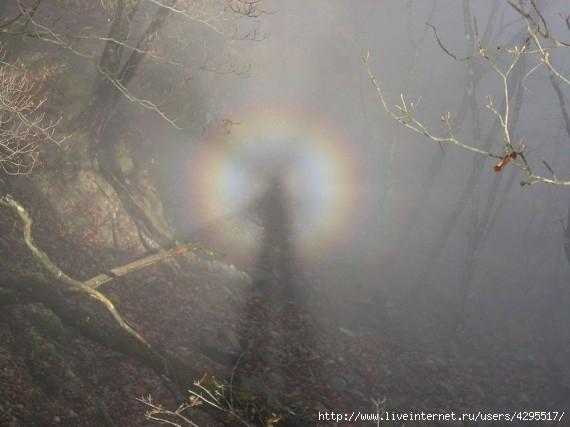 феномен/4295517_1319705008_light_fenomen_14 (570x427, 106Kb)