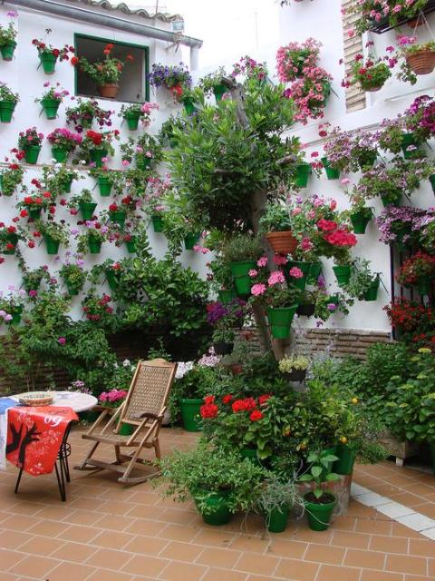 Patio_Cordobes_9 (480x640, 79Kb)