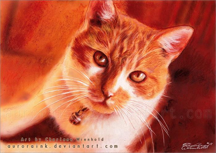 Картины акварелью, акварели с кошками, рисунки кошек акварелью