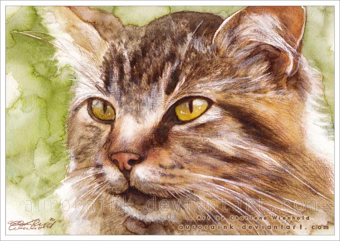Макияж кошки мастер класс акварель пошагово #2