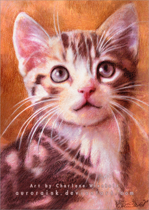 Макияж кошки мастер класс акварель пошагово #5