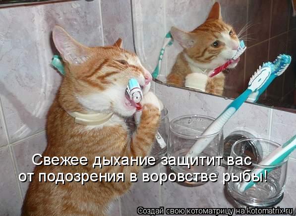 http://img0.liveinternet.ru/images/attach/c/4/79/516/79516014_large_b15.jpg