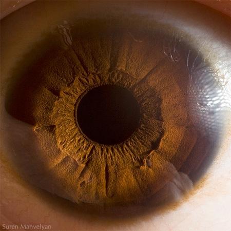 eye04 (450x450, 75Kb)