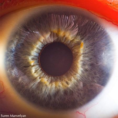 eye06 (450x447, 74Kb)
