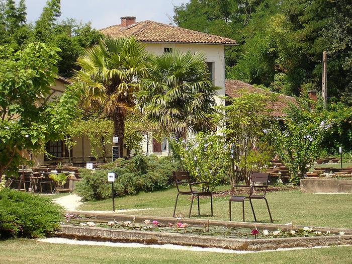 Есть в графском парке тихий пруд..... Там лилии цветут . .Ботанический сад Latour - Marliac. 19636