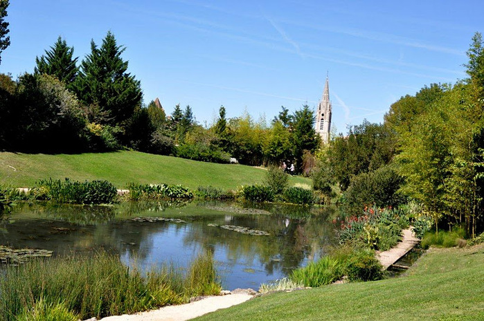 Есть в графском парке тихий пруд..... Там лилии цветут . .Ботанический сад Latour - Marliac. 53021