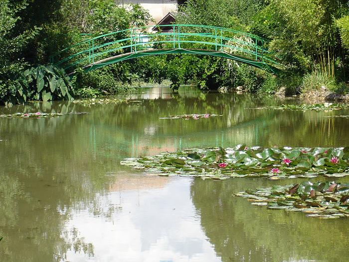 Есть в графском парке тихий пруд..... Там лилии цветут . .Ботанический сад Latour - Marliac. 28385