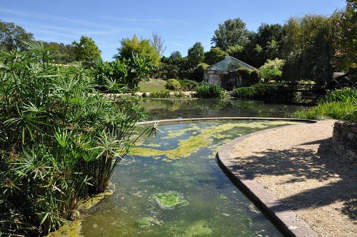 Есть в графском парке тихий пруд..... Там лилии цветут . .Ботанический сад Latour - Marliac. 89485