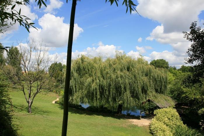 Есть в графском парке тихий пруд..... Там лилии цветут . .Ботанический сад Latour - Marliac. 67194