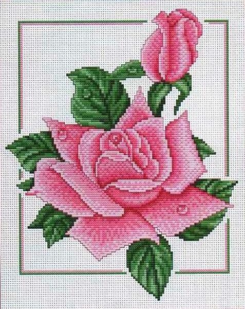 Чайная роза.  Вышивка крестом, схемы.  СХЕМА.