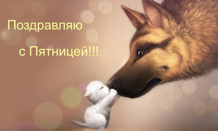 поздравляю с пятницей/1318607265_7kotenok_i_sobaka (700x420, 48Kb)