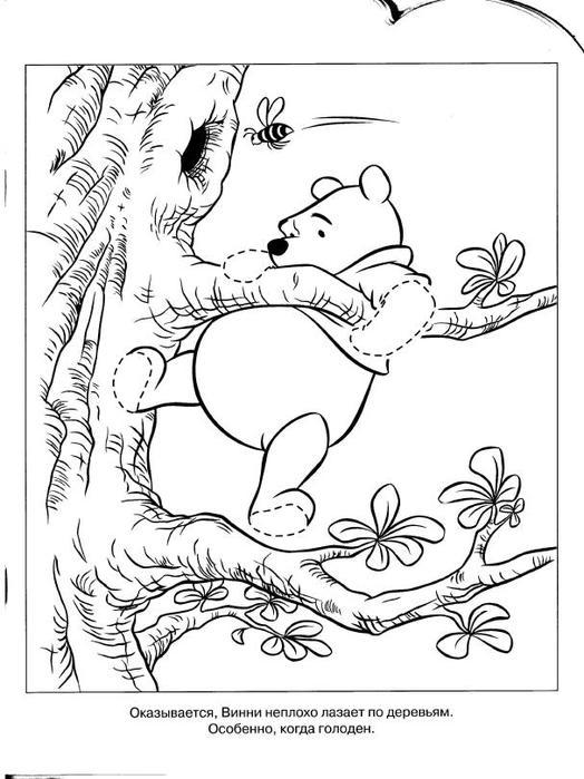 Эгмонт -  Умная раскраска. Винни и его друзья (2009)_10 (524x700, 62Kb)