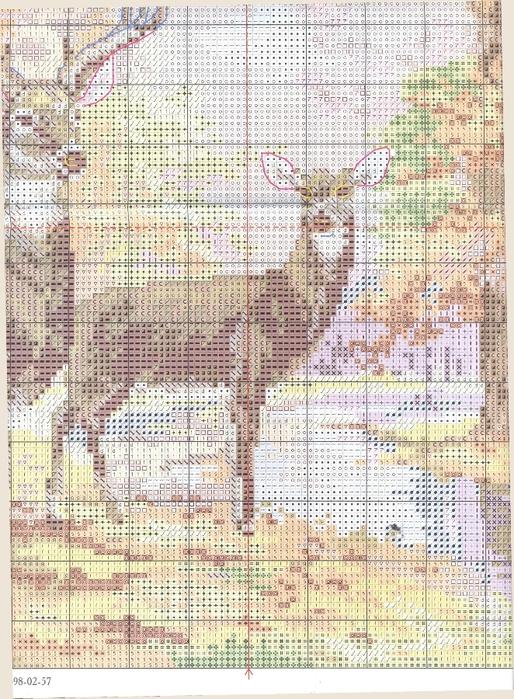 1-09 5 Олени в осеннем лесу (514x700, 376Kb)