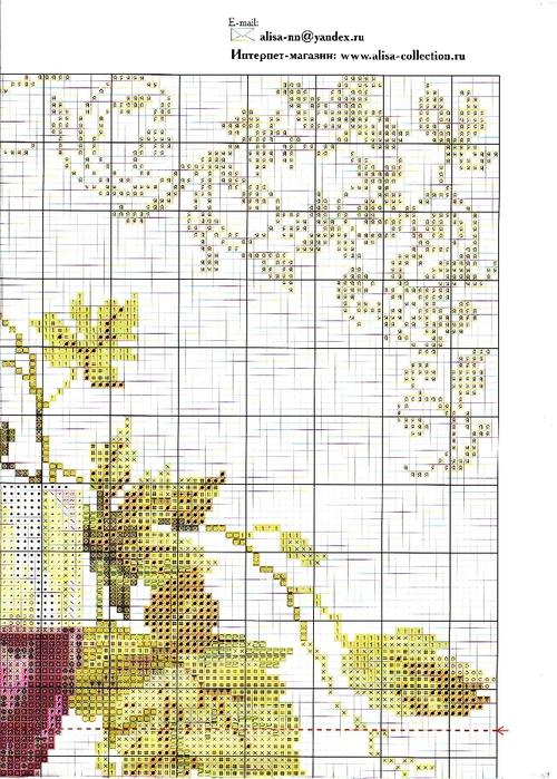 5-07 2 Изабелла (500x700,