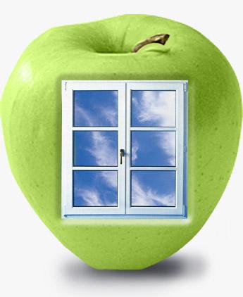 окно (345x422, 30Kb)