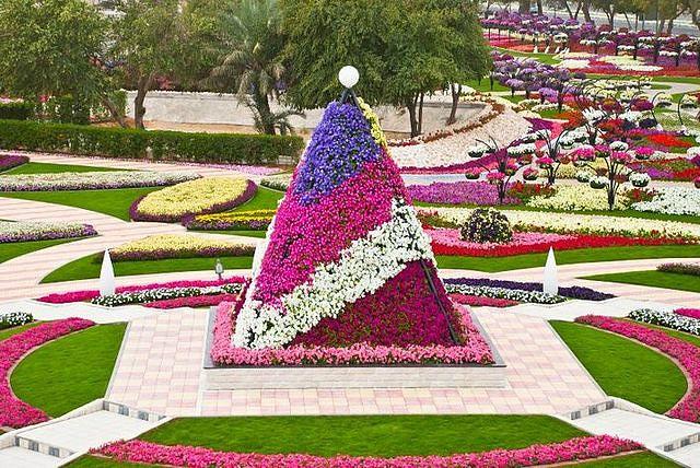 цветы 1 (640x428, 117Kb)