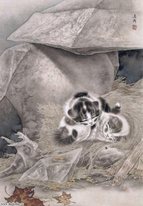 Кошки художника Сюй Синьци (5) (485x700, 84Kb)
