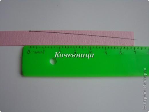 DSC01993 (520x390, 23Kb)