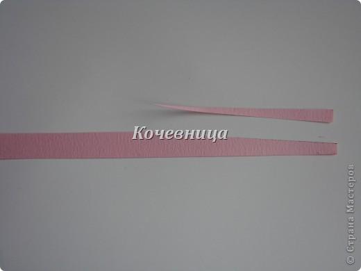 DSC01994 (520x390, 16Kb)