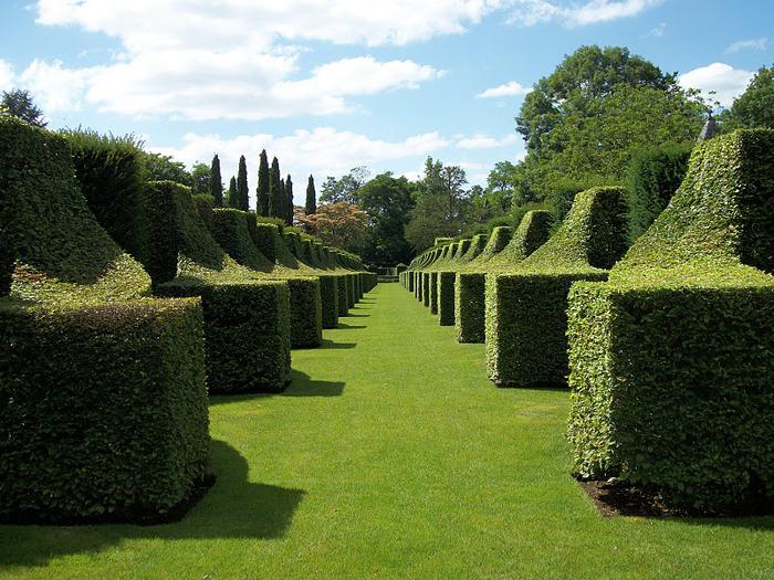 Сады поместья Эриньяк /Les Jardins du Manoir D'Eyrignac 26201