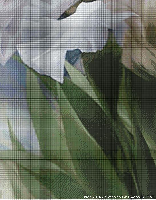 Вышивка крестом схемы белый ирис