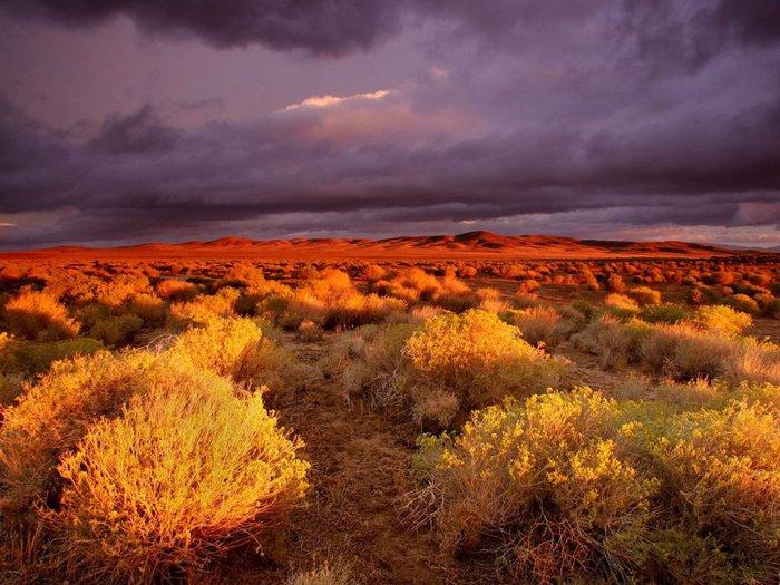 135_2 закат в пустыне (700x525, 92Kb)