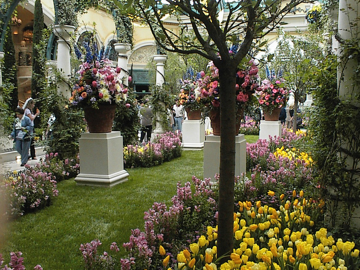 All sizes Bellagio Garden.jpg Flickr - Photo Sharing! (700x526, 1024Kb)