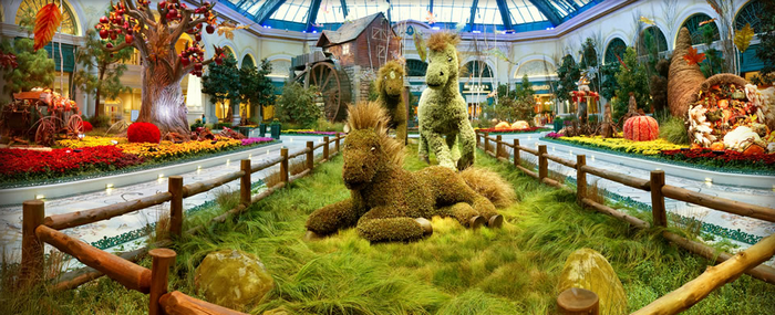 Bellagio Conservatory and Botanical Gardens - Las Vegas (700x285, 570Kb)