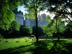 Превью New_York_Central_Park_cryazone.com (700x525, 169Kb)