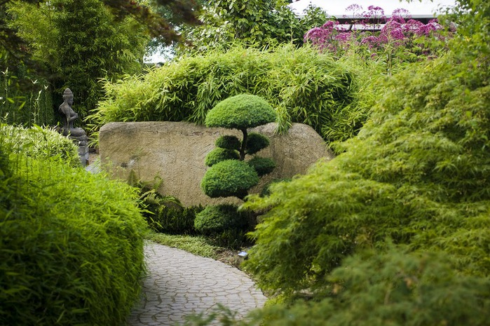 Волшебные сады Аппельтерна 92906