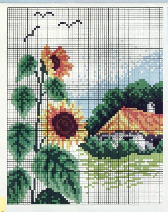 подсолнухи окно схема (556x700