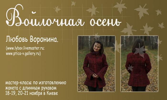 4310119_MK_11_20111 (700x420, 106Kb)