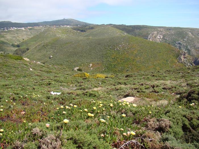 Cabo da Roca (33) (700x525, 369Kb)