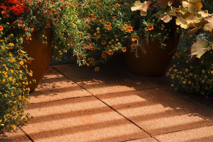 Волшебные сады Аппельтерна 49762