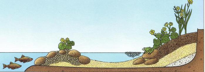 край водоема4 (700x246, 32Kb)