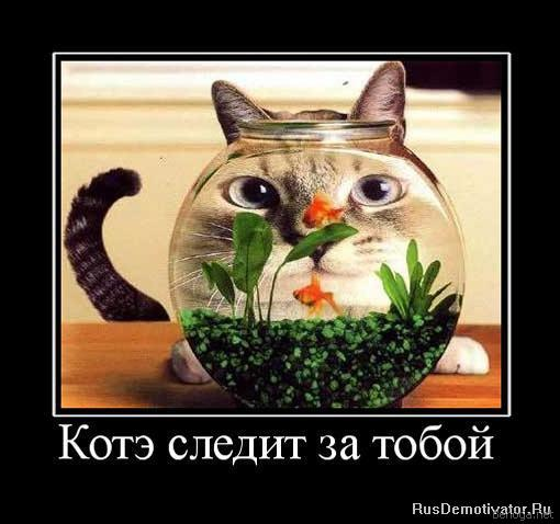 4326608_berloga_net_357588206 (510x478, 37Kb)