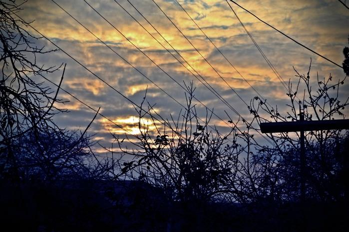 осеннее небо, закат, ёлки-палки