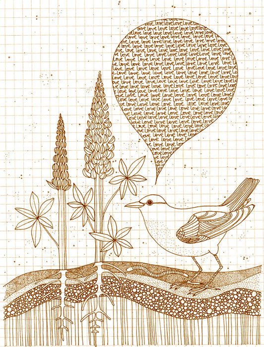 Lovebird (532x700, 298Kb)