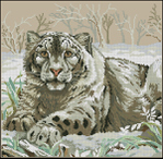 Превью Dimensions03835-The_Snow_Leopard (600x585, 376Kb)