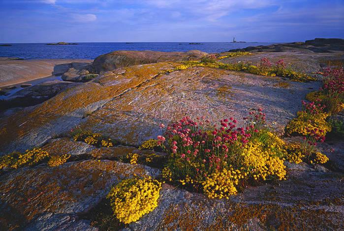 Архипелаг,_Аландские_острова,_Финляндия (700x471, 108Kb)