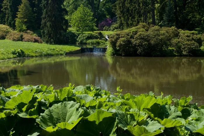 Ботанический сад в Пругонице 57995